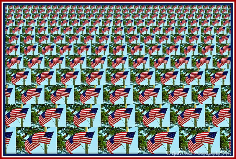 """""""FLAG DAY"""" 2017"""