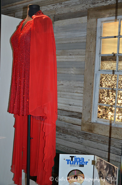 """TINA TURNER'S DRESS WORN IN """"THE ACID QUEEN"""" PERFORMANCE"""