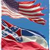 """""""CONFEDERATE FLAG CONTROVERSY"""" 2015"""
