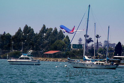 """F"" for FLIGHT We were strolling along San Diego Bay our last day and noticed how often the planes were landing and taking off.  Since they only have 1 runway - (Thanks to my pilot husband for the technical data) I decided to try and catch a take off and landing.  This was my best take off shot!  Nice to have gotten a Southwest plane - they are so colorful!"