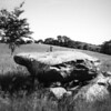 Annadorn Dolmen<br /> near Loughinisland<br /> County Down<br /> 16th June 2014<br /> Pictured by Michelle