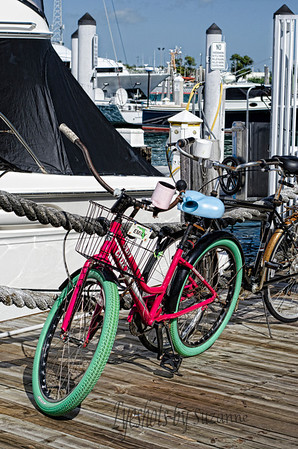 Boats, Bicycles and Sunshine Loved the bright pink of this bicycle Key West Harbor