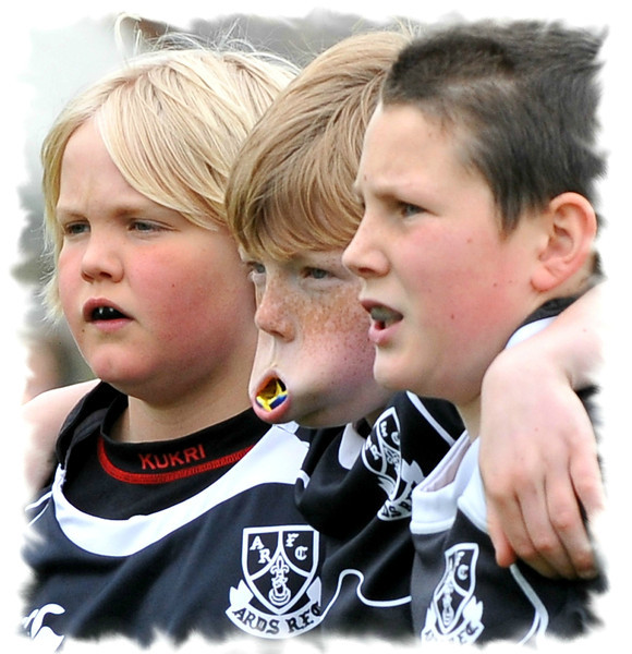Young Lions<br /> Ards Rugby Club<br /> Post Date: 31st January 2014