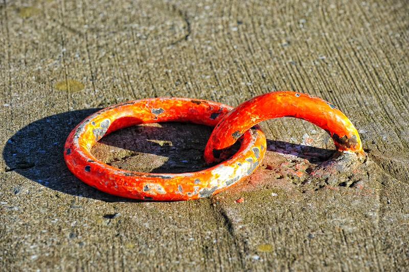 Mooring Rings<br /> Strangford<br /> County Down<br /> 8/2/2015