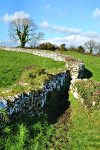 Nendrum Momastic Site, County Down. Tuesday, 23rd February 2016.