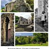 Dungiven Priory<br /> County Londonderry