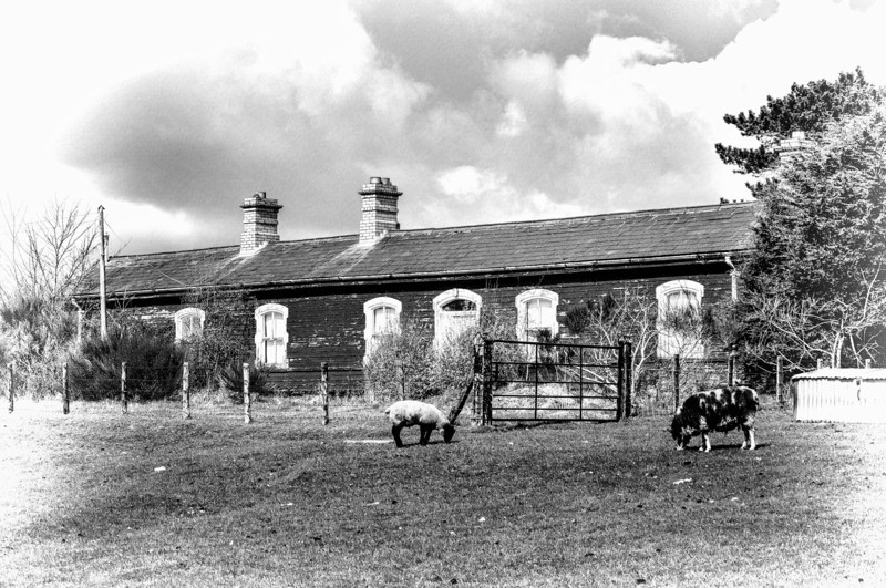 The old Great Northern Railway station in Ballyward, County Down.