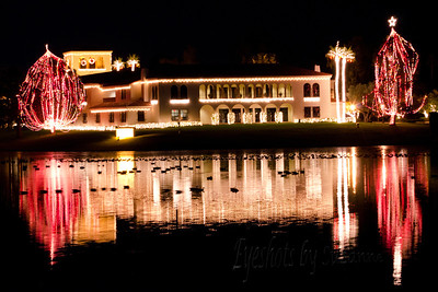 Reflections on the McCormick Ranch Lake.  It was 46 degrees and the ducks were having a wonderful time.  I always loved the way this Office Bldg. is decorated for the holidays.