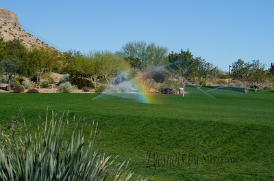 Mini Rainbow on Thanksgiving, Exploration Park, Las Vegas, NV.  View full size.