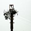 Nest & Pole