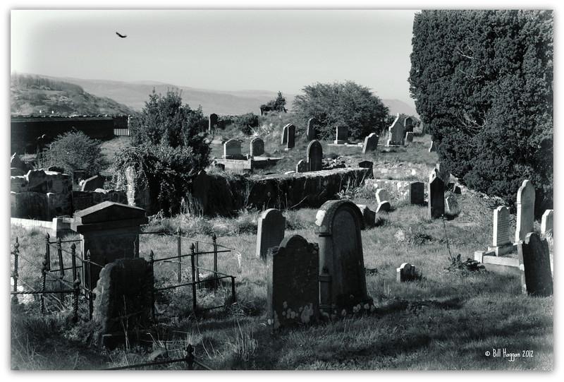 St Patrick's Church of Ireland graveyard. Glenarm, County Antrim