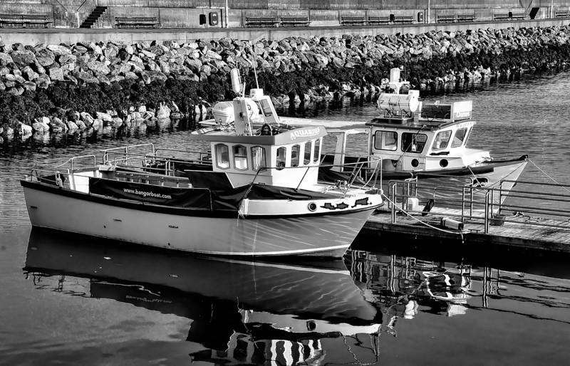 Boats in Bangor Marina, County Down