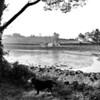 Sasha, Sketrick Island