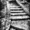 Stone stairway. Donard Park, Newcastle, County Down