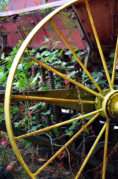 Put Out to Pasture... <br /> <br /> Daily Photos  -  September 26, 2011<br /> <br /> Old Farm Equipment