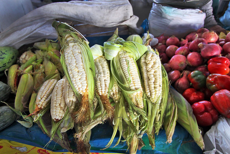 Choclo - ears of corn with huge kernels - at the San Pedro market in Cusco, Peru