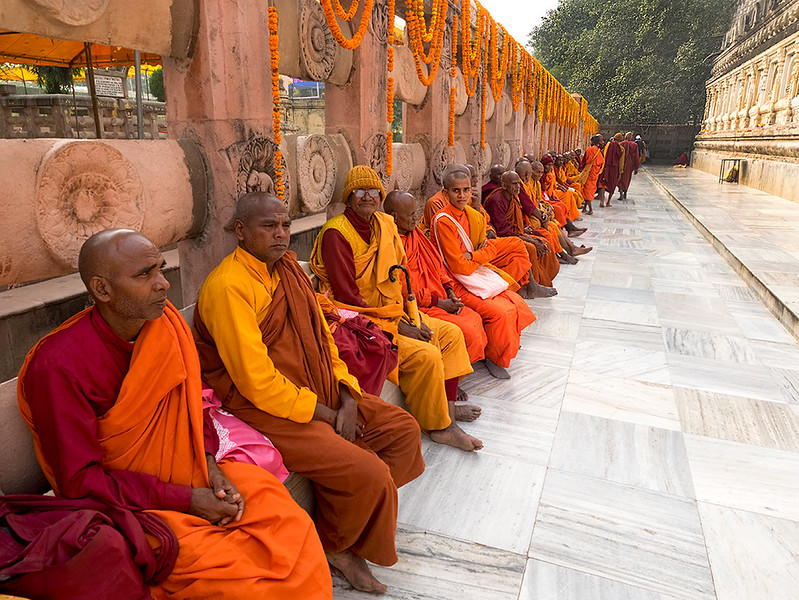 Monks come to Mahabodhi Temple to meditate beneath the ancestor of the Bodhi Tree in Bodh Gaya, India, beneath which Buddha became enlightened