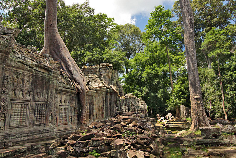 Ta Prohm ruins at Angkor Wat, Cambodia