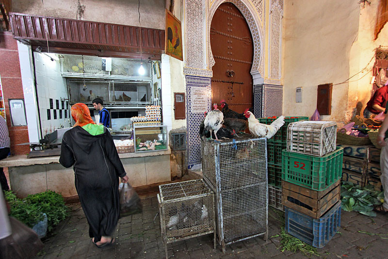 Eggs don't come any fresher than the ones sold in the Medina in Fez, Morocco