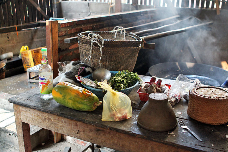 Cat curls among ingredients laid out for making rice cakes in Luang Prabang, Laos