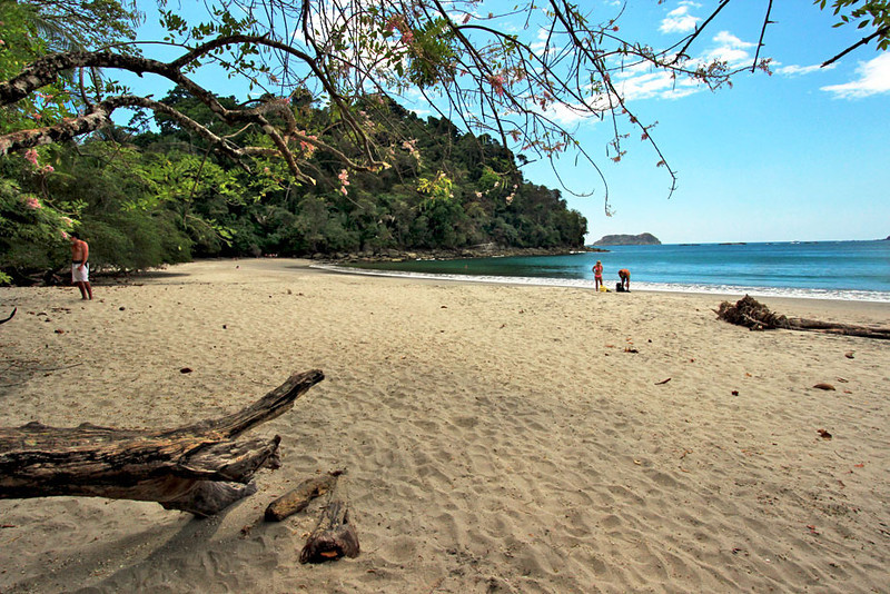 Stunning beach at Manuel Antonio National Park, Costa Rica