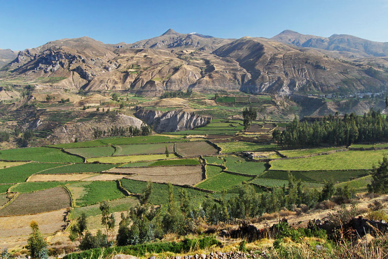 Patchwork fields between villages in Colca Canyon, near Arequipa, Peru