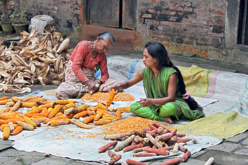 Women shell corn at the historic Changu Narayan temple in the eastern Kathmandu Valley, Nepal