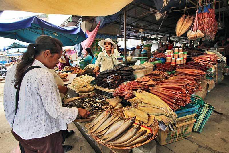 Bounty from Tonle Sap Lake sold at the market in Battambang, Cambodia