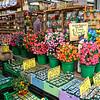 Shop at the Bloemenmarkt, Amsterdam's floating flower market