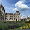 Lavender blooms in the gardens at the Hungarian Parliament in Budapest