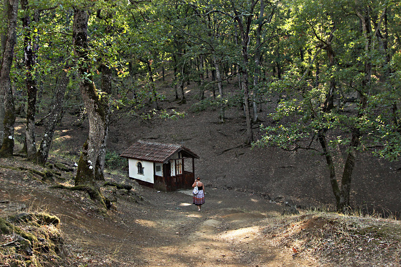 Tiny chapel in the woods in the countryside surrounding the Bulgarian town of Yasna Polyana