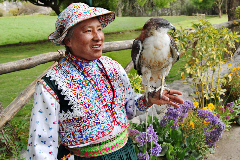 Falcon and handler at the Mansion of the Founder of Arequipa, Peru