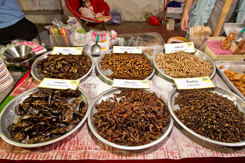 Fried insects are a popular snack at the Sunday Night crafts market in Chiang Mai, Thailand