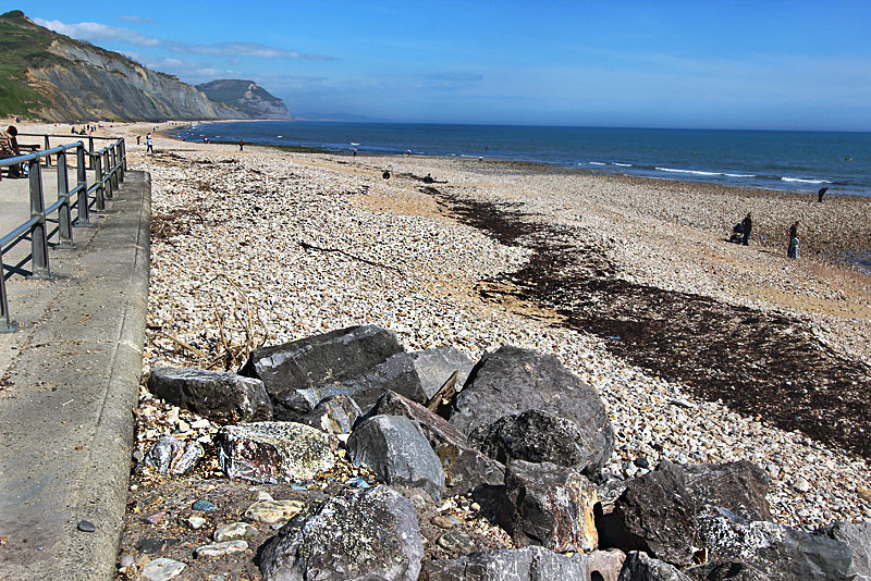 Shingle beaches of Charmouth, on England's Jurassic Coast, yield a wealth of ancient fossils