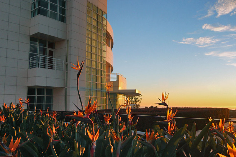 Setting sun illuminates Getty Museum and Birds of Paradise in Los Angeles