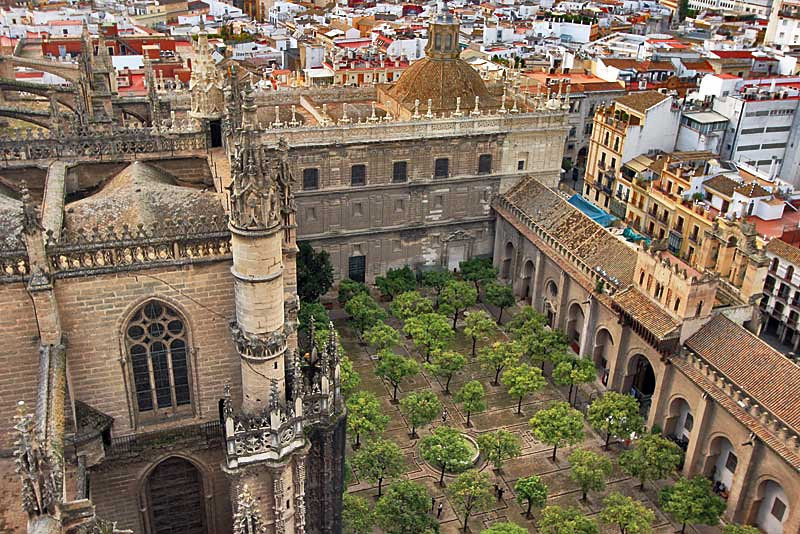 Orange grove courtyard inside the cathedral in Seville, Spain