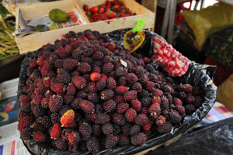Mora berries at market in Gualaceo, near Cuenca