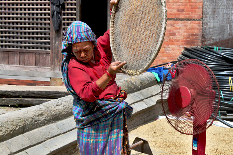 Winnowing the rice to remove the wheat from the chaff at Changu Narayan, Nepal