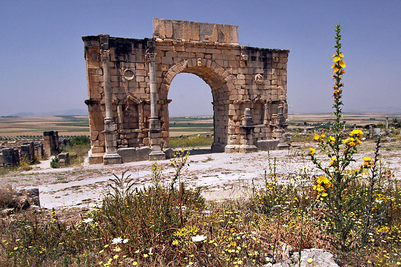 Third century Roman ruins at Volubilis, Morocco