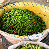 Fresh chiles (khursani) at the Kalimati Fruits and Vegetables Market in Kathmandu, Nepal