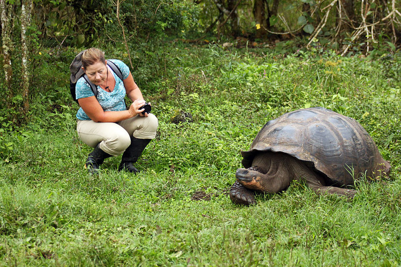 My sister, Nancy, and Giant Tortoise, check each other out, Galapagos Islands of Ecuador