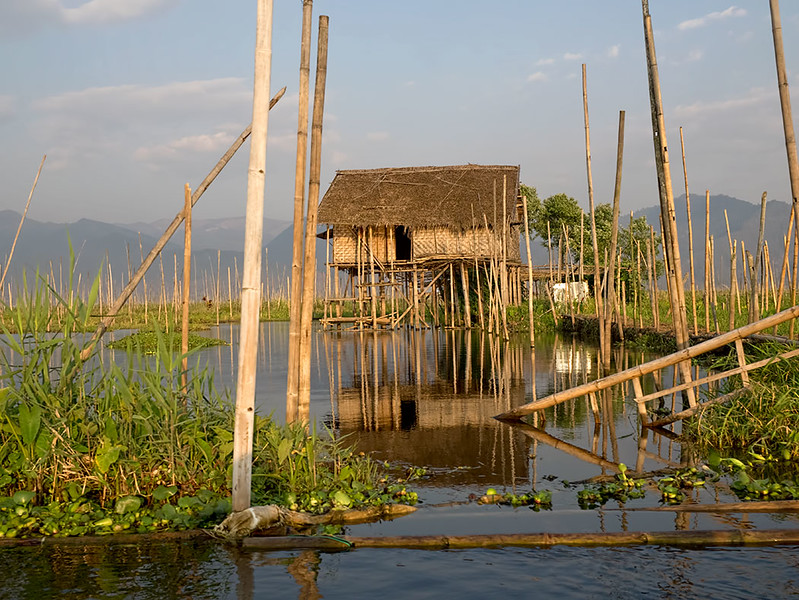 Typical house built on stilts over Inle Lake, Myanmar, with floating gardens surrounding the home