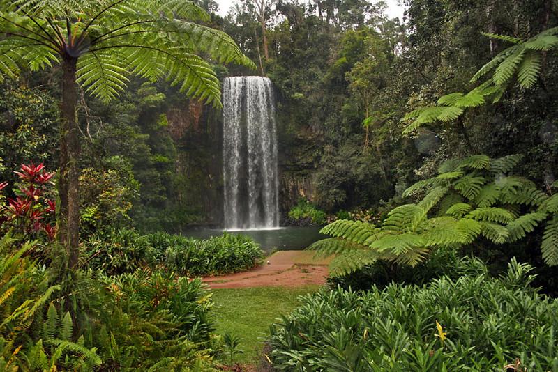 Milla Milla Falls in the Atherton Tablelands of Northeast Australia
