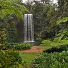Milla Milla Falls in the Atherton Tablelands of Northeast Australia