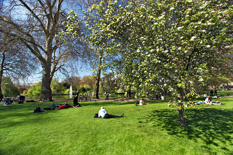 Spring in full bloom attracts Londoners to St. James Park