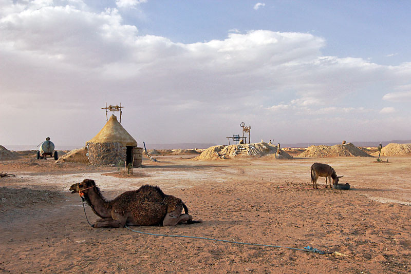 Camels and wells in the Sahara Desert of Morocco