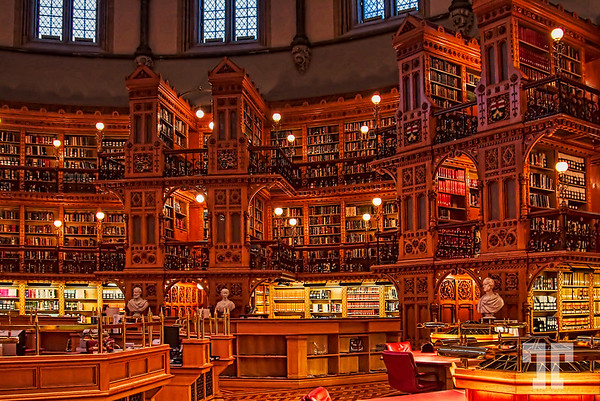 Inside the library (aa)