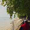 May 06, 2011<br /> <br /> Walking on the lakeside Bodensee-Lake-Constance