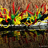 """SONORAN BOAT"" (2013) by Dale Chihuly"