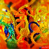 """Abstract of """"THE ELEANOR BLAKE KIRKPATRICK MEMORIAL TOWER"""" by Dale Chihuly (The Metamorphosis)"""